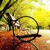 Disfruta la vida, es más tarde de lo que crees