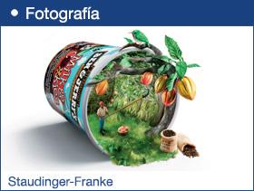 Staudinger-Franke