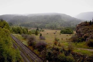 Black Forest Homes for Sale. Black Forest Real Estate. Ben Townsend Realtor