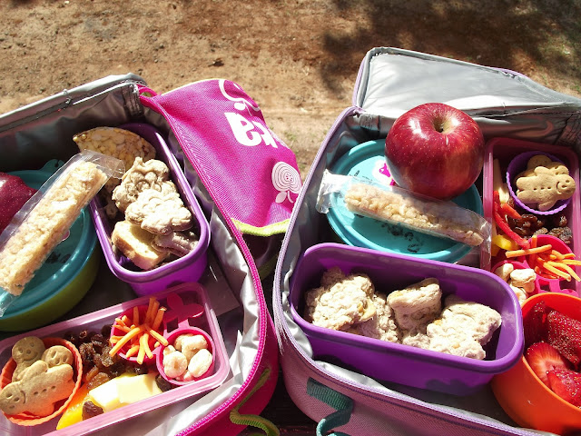 Ideas for toddler lunchboxes - Mummy Musings and Mayhem