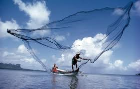 Blogging is like fishing with a net. Huge reach.
