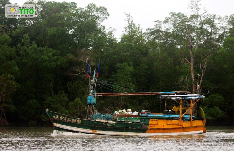 Barco 'J. Filho' e o manguezal na ilha de Maiandeua (Algodoal), no Pará