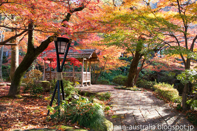 Gifu Park in Autumn