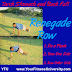 Burn Stubborn Stomach and Back Fat with Renegade Row
