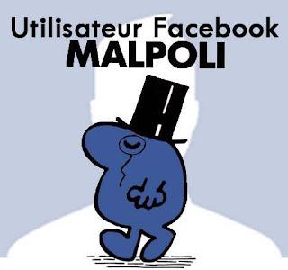 Impolitesses, Facebook et l'impitoyable blogosphère