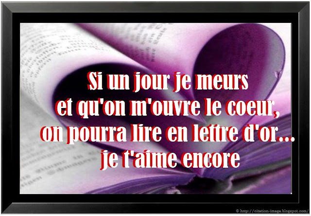 Citation d amour saint valentin 2013 en image