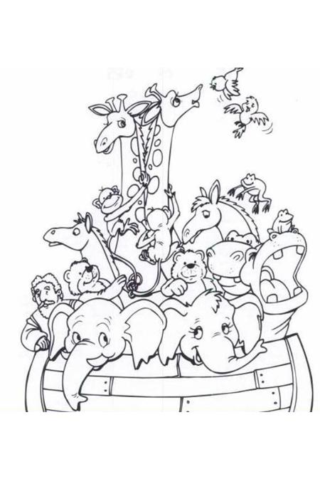صورة أزواج من الحيوانات داخل المركب