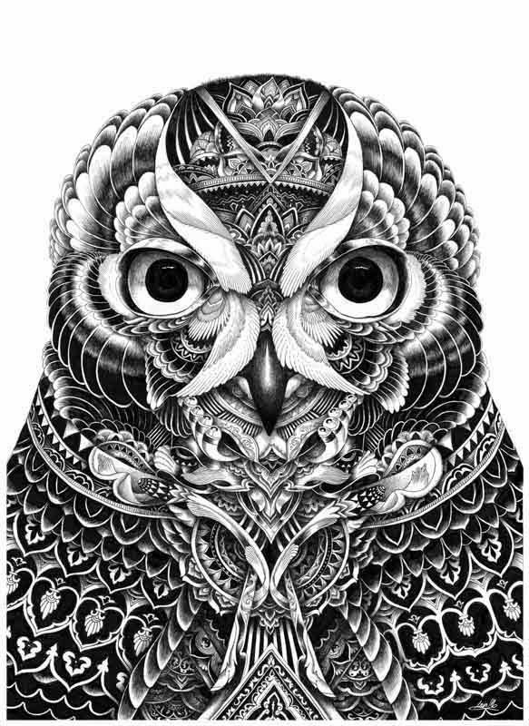16-Iain-Macarthur-Precision-in-Surreal-Wildlife-Animals-Drawings-www-designstack-co
