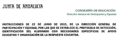 Protocolo Andalucia NEAE