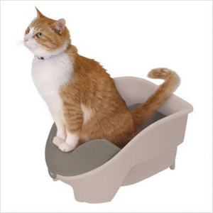 Potty train cat reviews