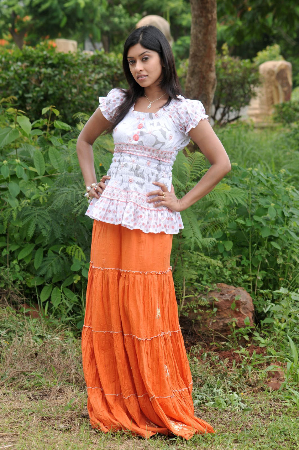 Payal Gosh1 - Telugu Actress Payal Gosh Wallpapers