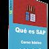 (Udemy) Qué es SAP   Curso básico de introducción
