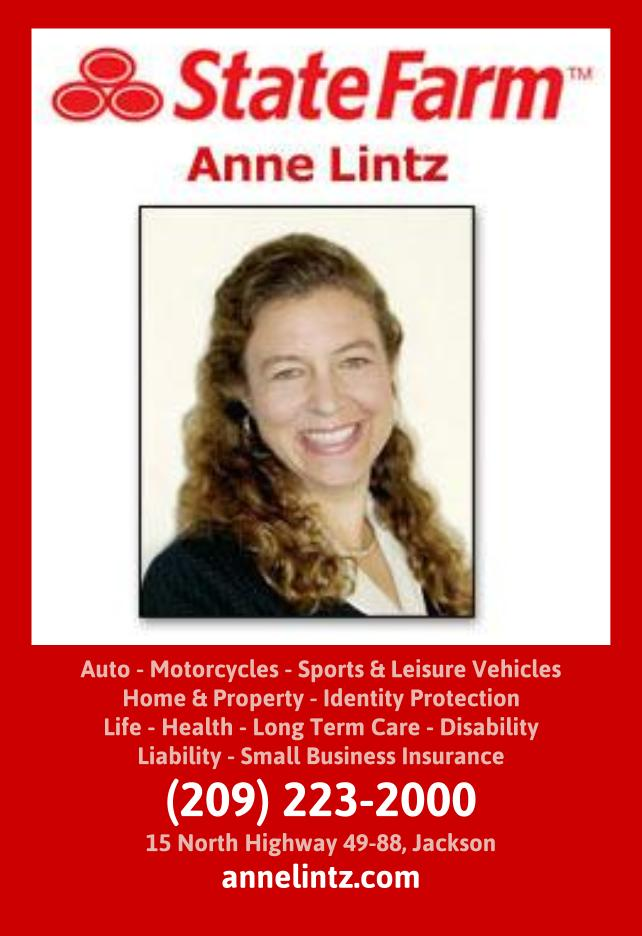 Anne Lintz - State Farm