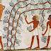 Разшифроваха 1900-годишна древноегипетска рецепта срещу махмурлук