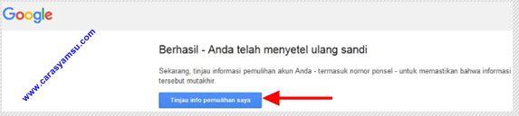 Anda Berhasil Menyetel Ulang Password Email Gmail