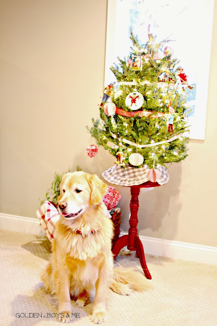 Tabletop Frasier Fir Christmas Tree and Golden Retriever-www.goldenboysandme.com