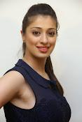 actress Lakshmi rai glam pics-thumbnail-15