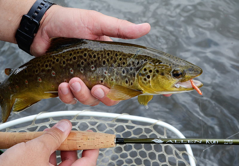 Book review dynamic nymphing by george daniel fly fish for George daniel fly fishing