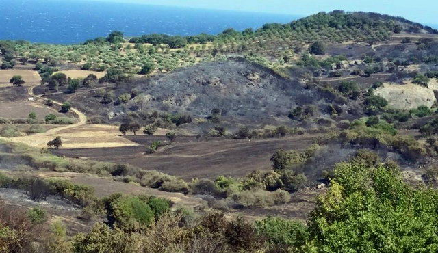 2.000 καμένα στρέμματα ο απολογισμός της φωτιάς στη Σαμοθράκη