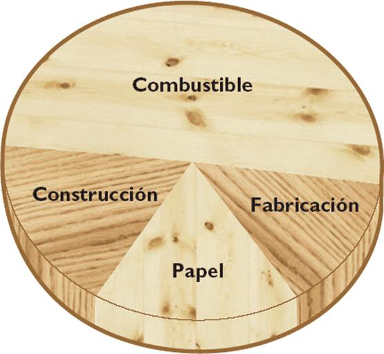 Propiedades de la madera propiedades de la madera for La beta de la madera