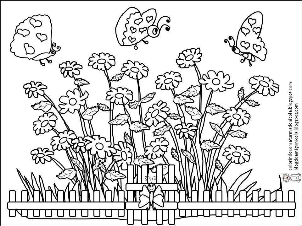 COLORINDO COM A TURMA DO NICOLA~ Imagens De Jardim Para Colorir
