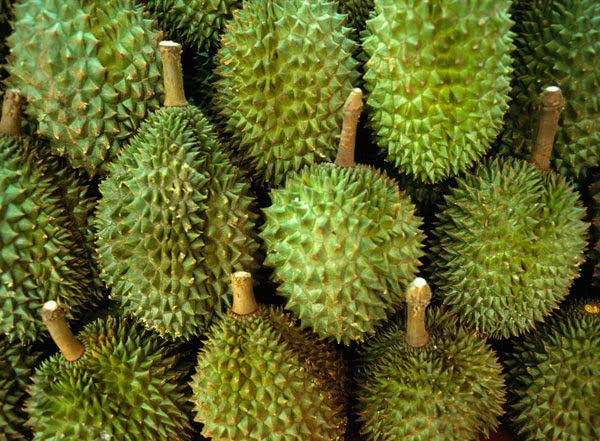 11 Amazing Benefits of Durian2