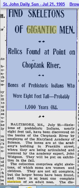 1905.07.21 - St. John Daily Sun