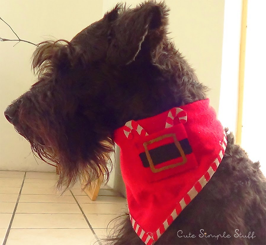 http://www.cutesimplestuff.com/2014/12/diy-christmas-bandana-for-dogs.html