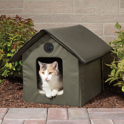 Creative Cat Houses and Cool Cat Bed Designs (21) 4