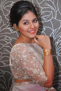 Anjali latest Glamorous pics in saree 009