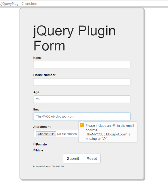 Build a customizable jQuery Plugin for HTML5 Form