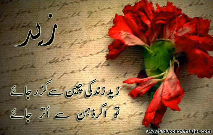 new urdu poetry