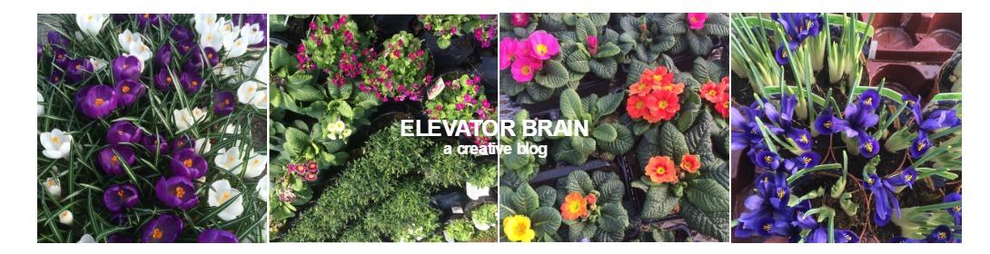 Elevator Brain