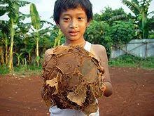 Futbol jest popularny na całym świecie.