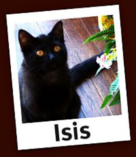 Little Isis