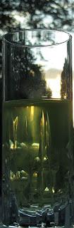 estratto di pomodoro crudo con la gelatina