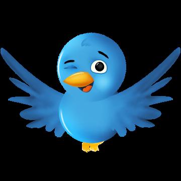 كيفية الحصول على زوار لموقعك من التويتر ؟