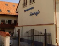pension-zanzi-sibiu-hotel-romania