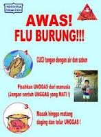 Cara Mencegah Penularan Flu Burung