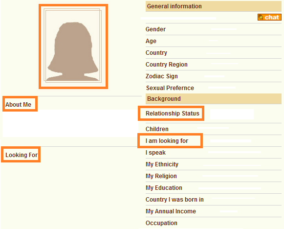 Online dating site profile template