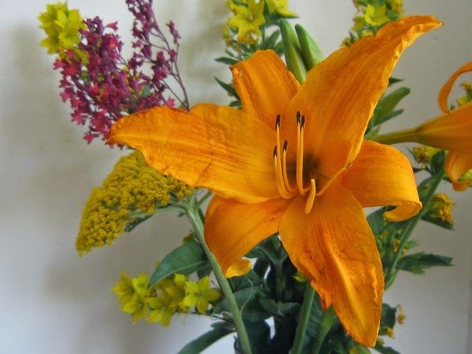 la fleur du dimanche ce sont les soldes m me des fleurs. Black Bedroom Furniture Sets. Home Design Ideas