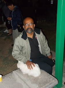 """At """"Seremonı Cafe"""" with the unbelievable bold Persian cat."""