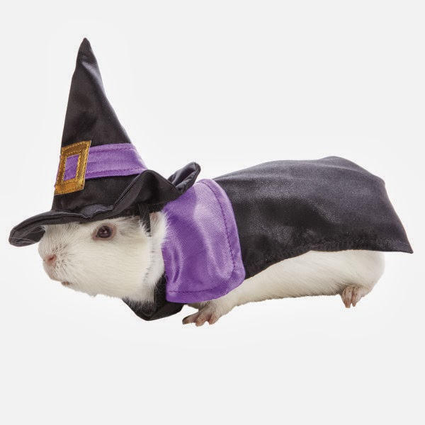 Small Halloween Costumes Costume For Small Pets