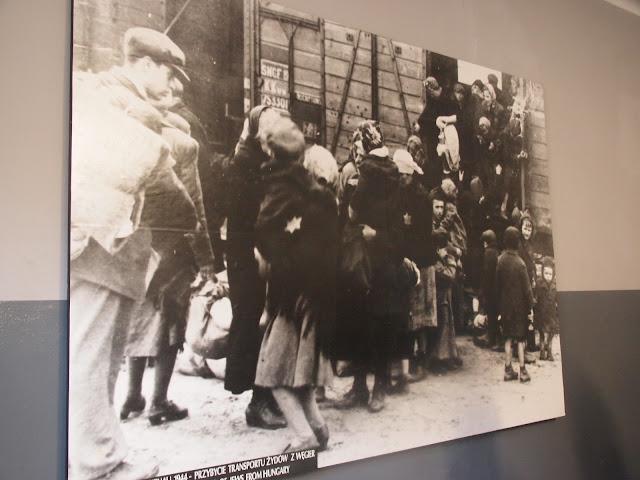アウシュヴィッツ強制収容所の画像 p1_22