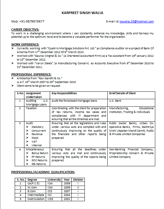 Curriculum Vitae For Ca Articleship