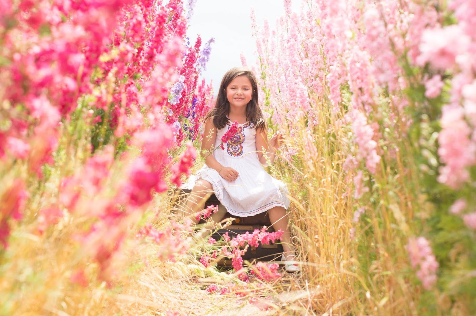 The Confetti Blog The Real Flower Petal Confetti pany s Confetti Flow