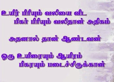 Comedy Funny Lines in Tamil