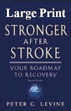 Stronger After Stroke (Large Print)