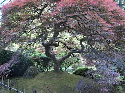 Jane sassaman 39 s idea book garden divas in the rain - Portland japanese garden free day ...