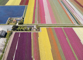 Places to visit in netherlands, Holland places, Haarem